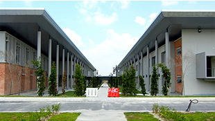 Faculty Buildings